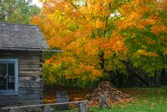 Wibrujący jesień kolory przy starym światem Wisconsin obraz stock