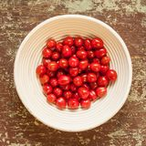 Wicked basket with fresh picked cherry tomatoes royalty free stock photo