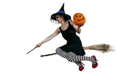 Wicked Witch Stock Photos