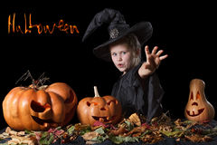 Wicked witch casts a spell and sends the curse. Halloween. Halloween. Wicked witch casts a spell and sends the curse. Surrounded scary pumpkins and leaves on a Stock Photo