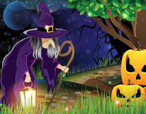 Wicked witch and Jack O lanterns Royalty Free Stock Photography