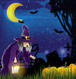 Wicked witch and  pile of pumpkins Royalty Free Stock Image