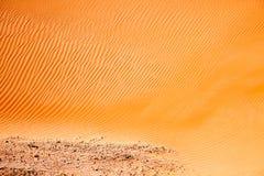 Wickeln Sie geschaffene Muster in den Sanddünen von Liwa-Oase, Vereinigte Arabische Emirate stockfotografie