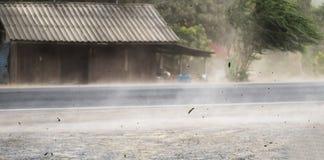 Wickeln Sie Sturm durchgebrannten Staub und Blätter auf Straße stockfotos