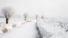 Wickelnder gefrorener Abzugsgraben in einer winterlichen Polderlandschaft Stockfotos
