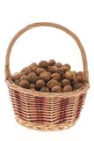 wicker грецких орехов корзины стоковые фото