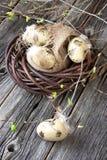 wicker пасхальныхя корзины цветастый Стоковая Фотография