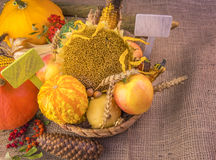 Wicker basket with an abundance of fall products Stock Photography