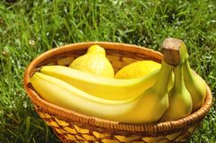 Wicker basket with bananas and lemons on a grass Stock Photo