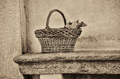 Wicker basket on a bench Stock Photography