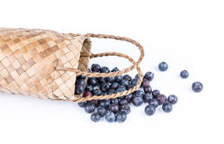 Wicker basket with Blueberries Isolate on white Royalty Free Stock Image