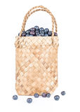 Wicker basket with Blueberries Isolate on white Stock Photography