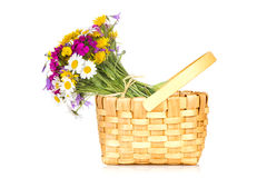Wicker basket with a bouquet of wildflowers Royalty Free Stock Photography