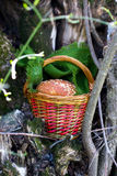 Wicker basket with bread roll and cloth Royalty Free Stock Photo