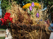 Wicker Basket Carried over the Shoulder of Countryman. Wicker Basket Filled with Sheafs of wheat and Flowers Carried over the Shoulder of Countryman Stock Images