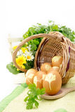 Wicker basket with colored eggs Royalty Free Stock Photos