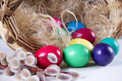 Wicker basket with colored eggs and willow branches on a white background Stock Images
