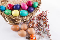 Wicker basket with colored eggs and willow branches on a white background Stock Photography