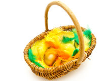 Wicker basket with egg Stock Photos