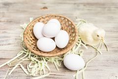 Wicker basket with eggs near a faux young yellow chicken Royalty Free Stock Images