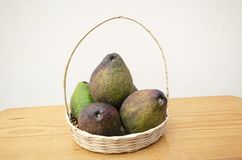 Wicker Basket Filled With Avocados stock photography