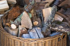 Wicker basket filled with pruned wood of different texture and color. For use in fireplace stock images