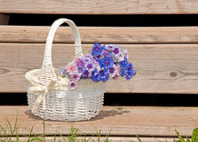 Wicker basket with flowers on rustic steps Stock Photography