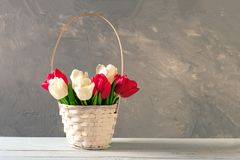 Wicker basket of fresh blooming tulips stands on wooden table. Banner mockup with copyspace for Womans or Mother day, Easter, spri. Ng holidays, birthday royalty free stock photos