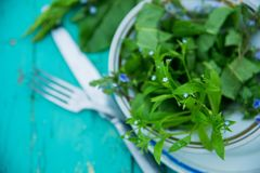 Wicker basket with fresh herbs. Healthy food. Detox. Organic nutrition. Salad with sorrel and mint with flowers Royalty Free Stock Photo