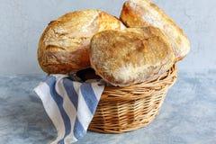 Freshly baked artisanal bread in the basket. Stock Photography