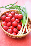Wicker basket with fresh radish and onion. Full wicker basket with fresh radish and onion Stock Image