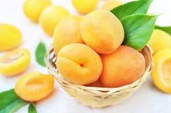 Wicker basket of fresh ripe sweet apricot fruits stock photo
