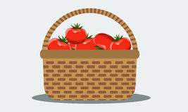Wicker basket with fresh tomatoes. Illustrated vector. Solid flat color. Royalty Free Stock Photo