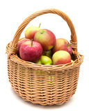 Wicker basket full of apples Royalty Free Stock Images