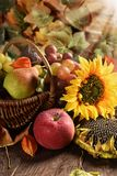 Wicker basket full of autumn fruits. On wooden table in rustic style arrangement royalty free stock images