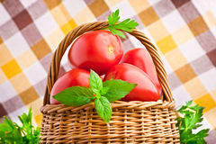 Wicker basket full of fresh tomatoes Royalty Free Stock Photography