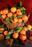 Tangerines. still life Stock Photography