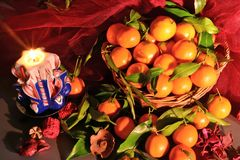 Tangerines. still life Royalty Free Stock Image