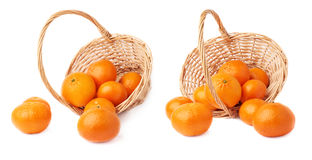 Wicker basket full of multiple ripe fresh juicy tangerines, composition isolated over the white background Royalty Free Stock Images