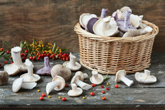 Wicker basket full of mushrooms. On wooden surface Stock Images