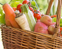 Wicker basket is full with organic vegetables Royalty Free Stock Image