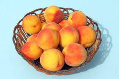 Wicker basket full of peaches Royalty Free Stock Photography