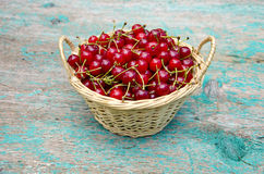 Wicker basket full of summer cherry fruits Stock Photography