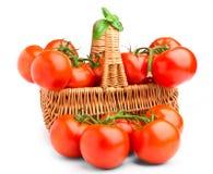 Wicker basket full of tomatoes Stock Image