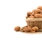 Wicker basket full of walnuts Royalty Free Stock Photos