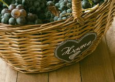 Wicker basket full of wine grapes stock photos