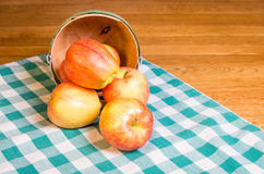 Wicker basket of Gala apples Royalty Free Stock Images