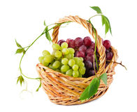 Wicker basket with grapes Royalty Free Stock Images
