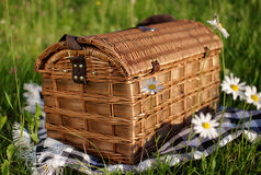 Wicker basket on the grass. Wicker basket with a cloth on the grass, sunny day Stock Image