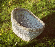 Wicker basket on the grass Royalty Free Stock Image
